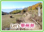 Let's 甲州弁